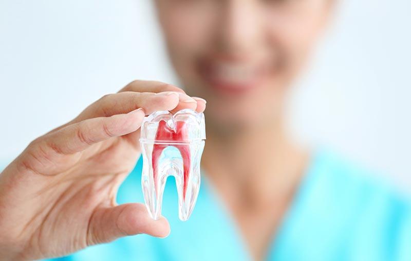 مراقبت از دندان برای زندگی